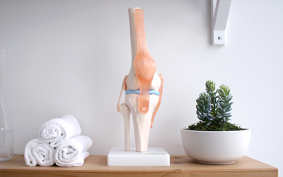 ACL injury and physiotherapy